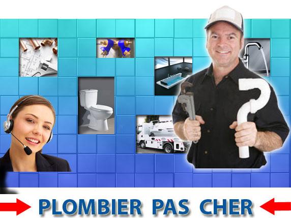 Toilette Bouché Dye 89360