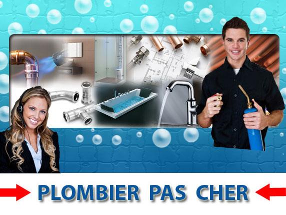 Toilette Bouché Mont Saint Sulpice 89250