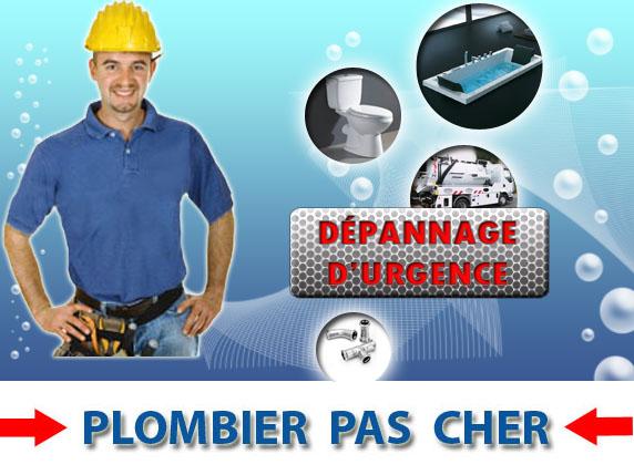 Toilette Bouché Plessis Saint Jean 89140