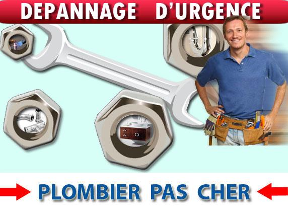 Toilette Bouché Roncheres 89170