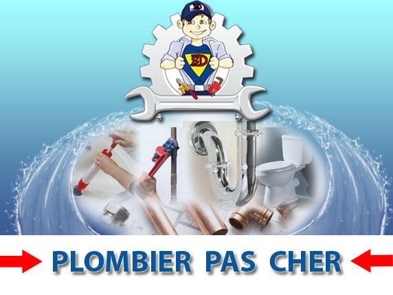 Toilette Bouché Sognes 89260